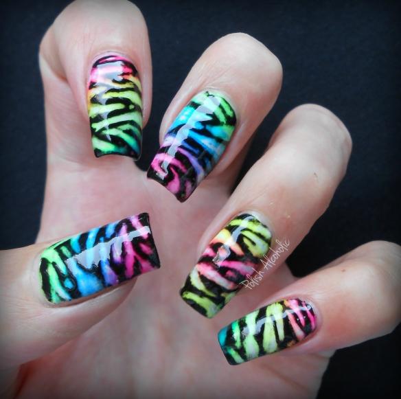 neon black zebra1